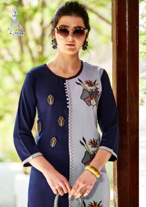 Diksha Raahi Vol-1 Casual Wear Kurtis ( 12 Pcs Catalog )